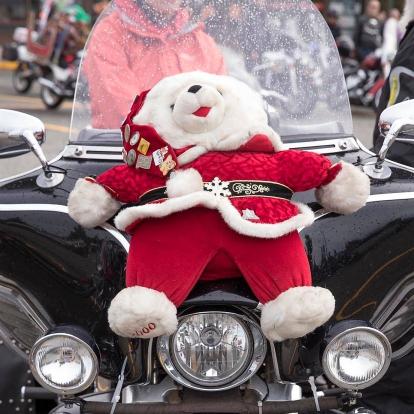 Stuffed Animal On Motorcycle
